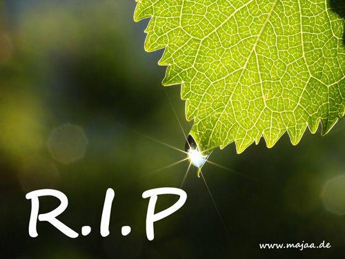 Bild: Rest in Peace – funkelnder Tropfen
