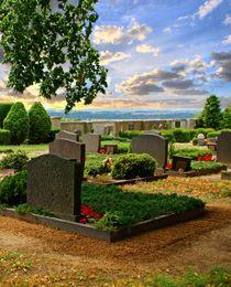 Grabgestaltung, Grabbepflanzung und Grabpflege.