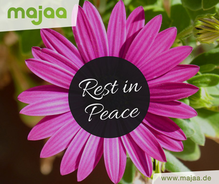 Wundervolles Trauerbild mit lila Blume - Rest in Peace
