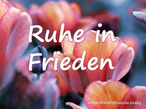 Trauerbild: Tulpe der Ruhe