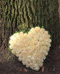 Kostenlose Trauersprüche und Trauertexte für Opa. Für Ihre persönliche Trauerkarte oder wunderschöne Trauerbilder online teilen.