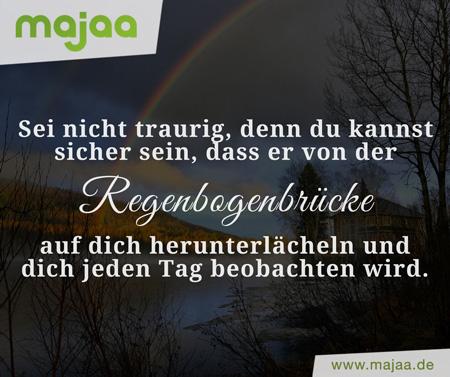 majaa App - einfühlsame Trauergedichte und Trauersprüche - Vater