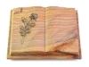 Grabbuch, Grabstein, Buch, Grabplatte, Steinbuch,  Rainbow, 40x30x7 cm