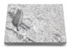 Grabtafel, Grabplatte, Grabstein, Grabmal, Urnenstein, Gedenkstein 40x30x3-5cm,