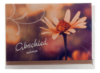 Trauerkarte - Abschied nehmen & Blume im Regen