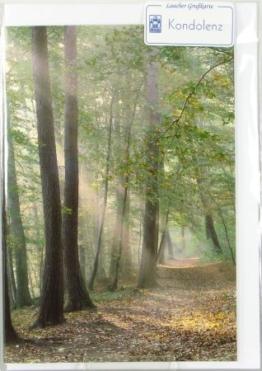 Trauerkarte - Sonnenstrahlen im Wald