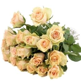 Creme / weiße Rosen im Bund mit Schleife