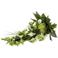 Wegbegleiter - Fleurop Blumenversand