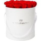 20 rote haltbare Rosen in weißer Hutschachtel