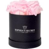 5 rosa haltbare Rosen in schwarzer Rundbox