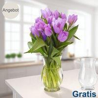 20 lila Tulpen im Bund