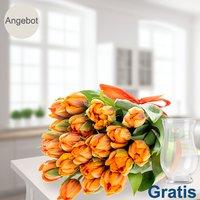 20 orange Tulpen im Bund