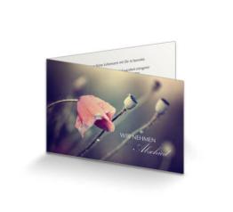 Trauerkarte Mohnblüte