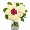 Einzigartige Rosen