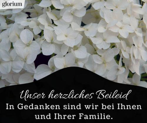 991-beileidsbekundungen-beileid-beileidssprueche-texte-kondolenz-beileidsschreiben-beileidskarten-bild-trauer-trauerspruch-glorium-blumen-weiss-bei-ihnen-und-familie