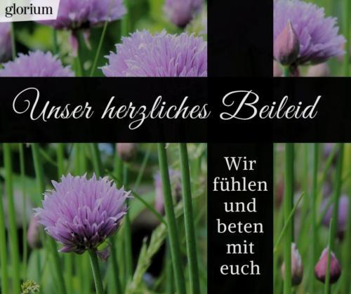 995-beileidsbekundungen-beileid-beileidssprueche-texte-kondolenz-beileidsschreiben-beileidskarten-bild-trauer-trauerspruch-glorium-kreuz-gott-beten-blumen-lila