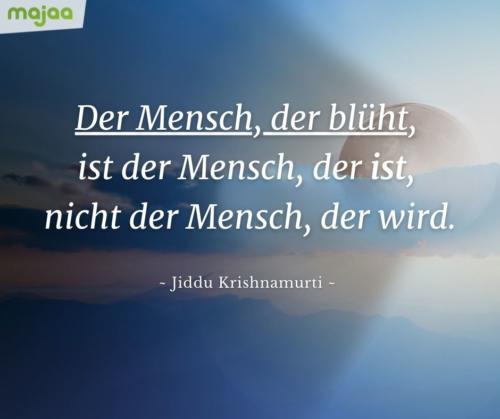 7966-sprueche-zitate-nachdenken-weisheiten-lebensweisheiten-leben-liebe-spirituell-energie-positiv-majaa-bilder-mensch-blueht
