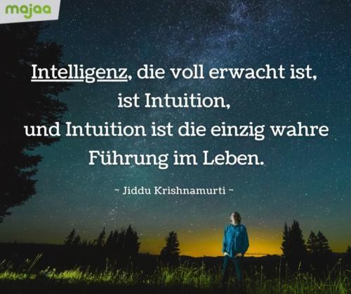 7970-sprueche-zitate-nachdenken-weisheiten-lebensweisheiten-leben-liebe-spirituell-energie-positiv-majaa-bilder-intuition