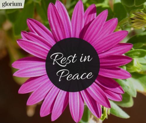 983-rest-in-peace-r-i-p-bilder-trauer-sprueche-karte-trauer-tot-beileid-gedenken-glorium-blume-lila-liebe