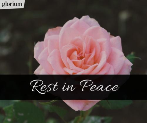 987-rest-in-peace-r-i-p-bilder-trauer-sprueche-karte-trauer-tot-beileid-gedenken-glorium-tod-rose-rosa