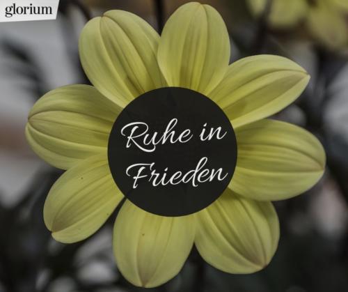 991-ruhe-in-frieden-bilder-trauer-sprueche-karte-trauer-tot-beileid-gedenken-glorium-blume-gelb
