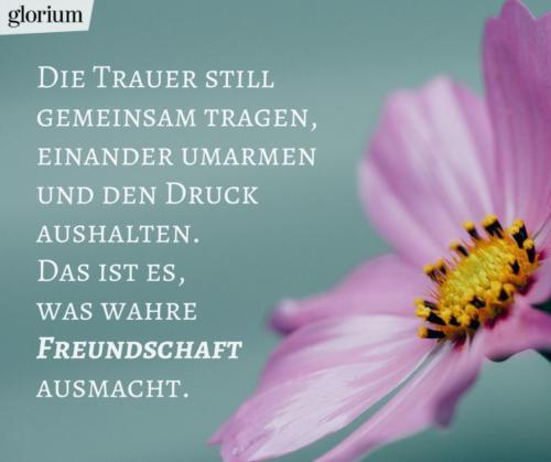 920-trauersprueche-trauerverse-texte-trauerbild-trauerkarte-bilder-trauer-trauerhilfe-karte-glorium-wahre-freundschaft-blume-lila
