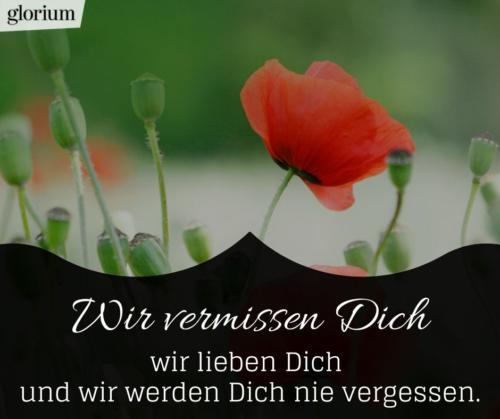 929-trauersprueche-trauerverse-texte-trauerbild-trauerkarte-bilder-trauer-trauerhilfe-karte-glorium-beileid-blume-vermissen-dich