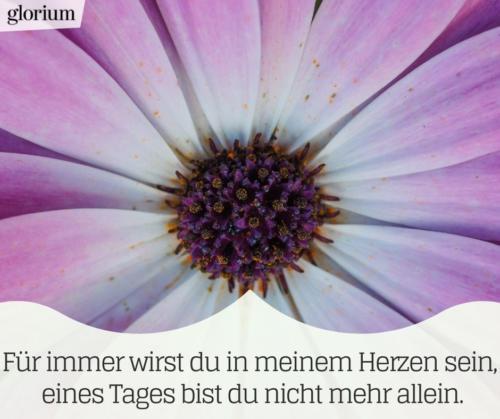 930-trauersprueche-trauerverse-texte-trauerbild-trauerkarte-bilder-trauer-trauerhilfe-karte-glorium-herzen-blume