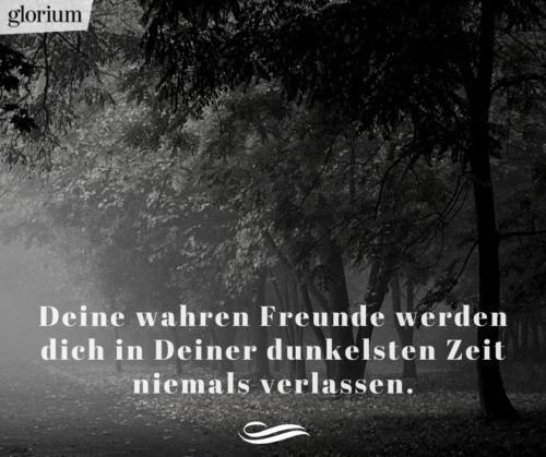 940-trauersprueche-trauerverse-texte-trauerbild-trauerkarte-bilder-trauer-trauerhilfe-karte-glorium-beileidsbekundung-wald-dunkelsten-zeit
