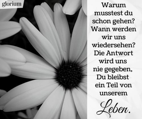 942-trauersprueche-trauerverse-texte-trauerbild-trauerkarte-bilder-trauer-trauerhilfe-karte-glorium-warum-schon-gehen-blumen
