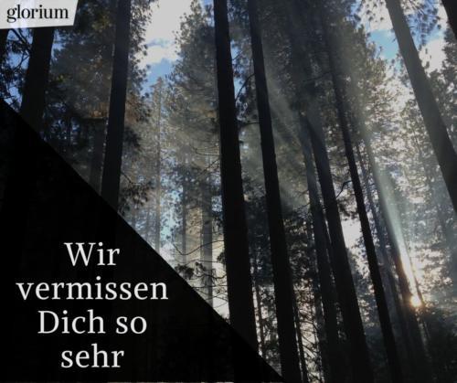 962-trauersprueche-trauerverse-texte-trauerbild-trauerkarte-bilder-trauer-trauerhilfe-karte-glorium-wald-sonnenstrahlen-wir-vermissen-dich-so-sehr